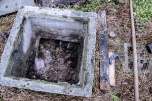 septic tank vs cesspools