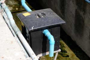 Don't Let a Dirty Grease Trap Put Your Restaurant at Risk